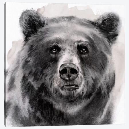Bear Grin II Canvas Print #JPP262} by Jennifer Paxton Parker Canvas Wall Art