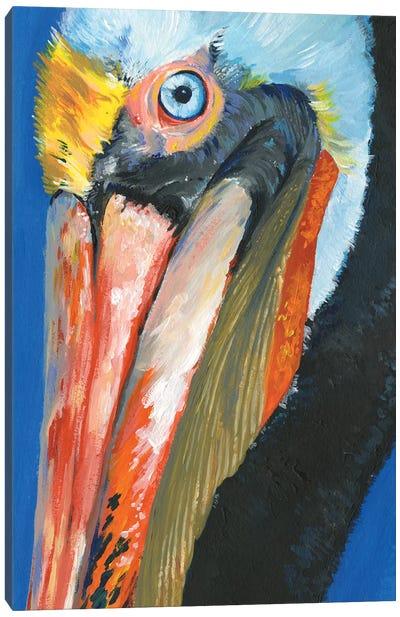 Vibrant Pelican I Canvas Art Print