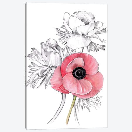 Anemone by Number I Canvas Print #JPP278} by Jennifer Paxton Parker Canvas Art Print