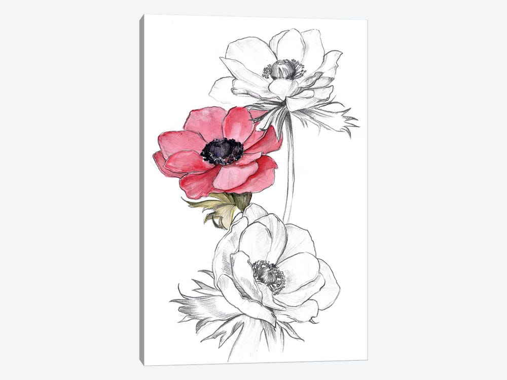 Anemone by Number II by Jennifer Paxton Parker 1-piece Art Print