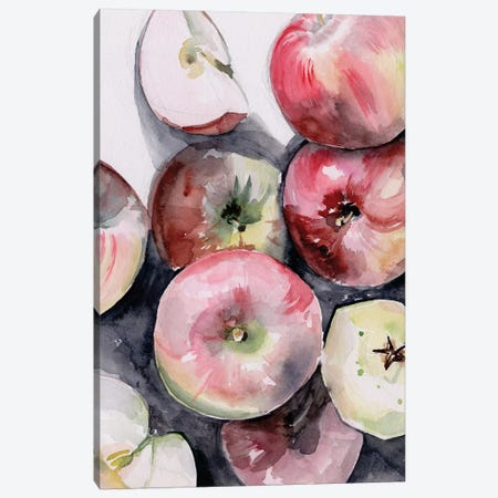 Fruit Slices I Canvas Print #JPP301} by Jennifer Paxton Parker Canvas Art Print