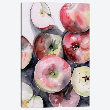 Fruit Slices I Canvas Print #JPP301} by Jennifer Paxton Parker Canvas Art Print