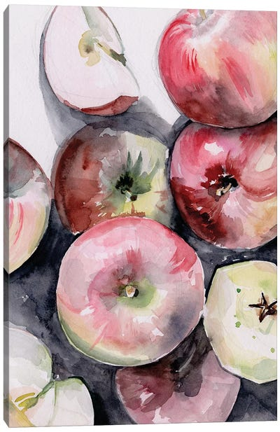 Fruit Slices I Canvas Art Print