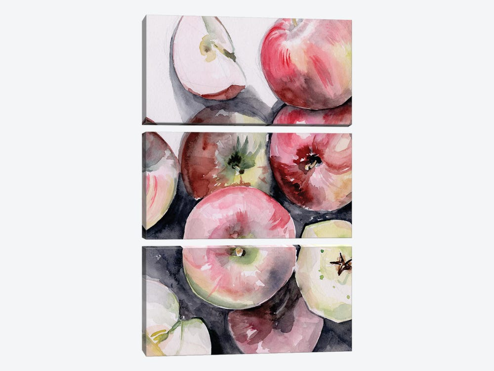 Fruit Slices I by Jennifer Paxton Parker 3-piece Canvas Print
