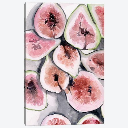 Fruit Slices II Canvas Print #JPP302} by Jennifer Paxton Parker Art Print