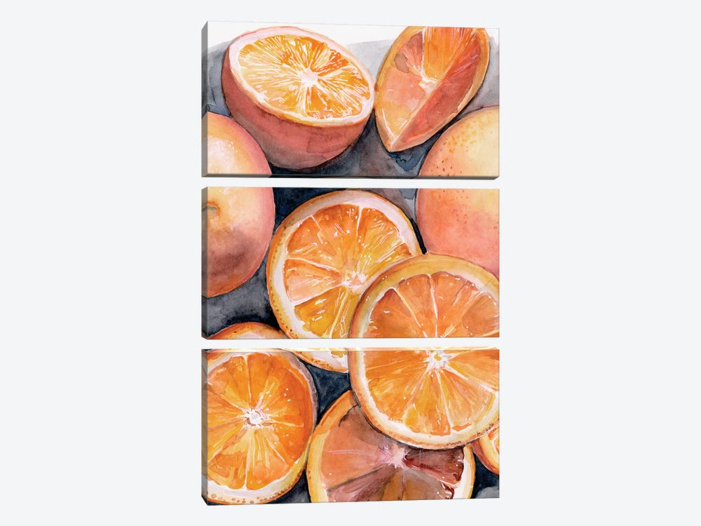 Fruit Slices III by Jennifer Paxton Parker 3-piece Art Print