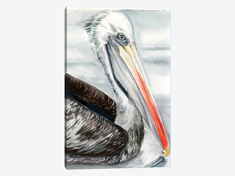 Grey Pelican I by Jennifer Paxton Parker 1-piece Canvas Print
