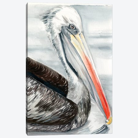 Grey Pelican I Canvas Print #JPP305} by Jennifer Paxton Parker Canvas Wall Art