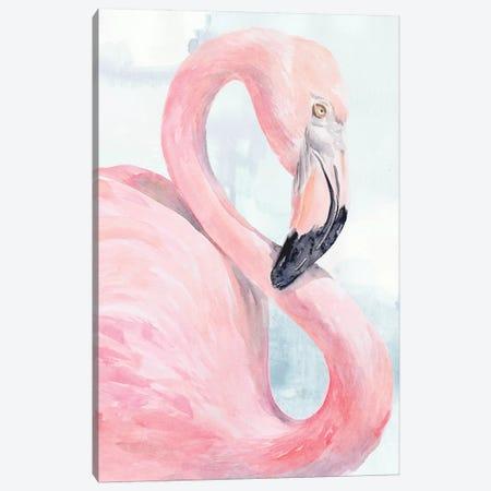 Pink Flamingo Portrait I Canvas Print #JPP317} by Jennifer Paxton Parker Canvas Print
