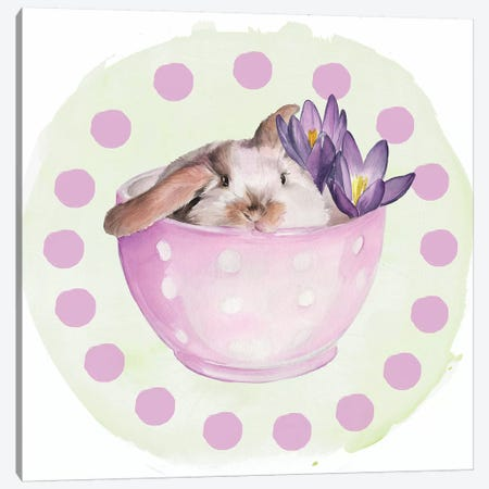 Bunny Crossing Collection C 3-Piece Canvas #JPP344} by Jennifer Paxton Parker Canvas Art