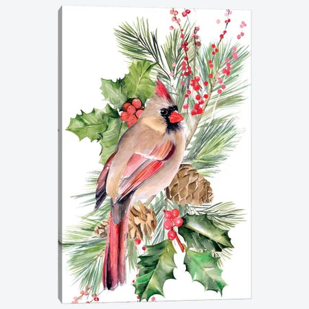 Cardinal Holly Christmas Collection B Canvas Print #JPP355} by Jennifer Paxton Parker Art Print