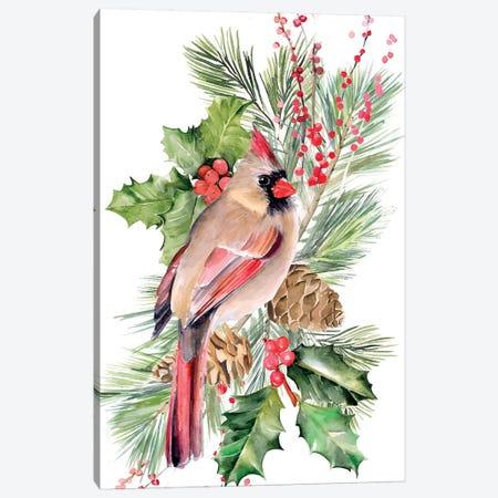 Cardinal Holly Christmas Collection B Canvas Print #JPP355} by Jennifer Paxton Parker Art Print