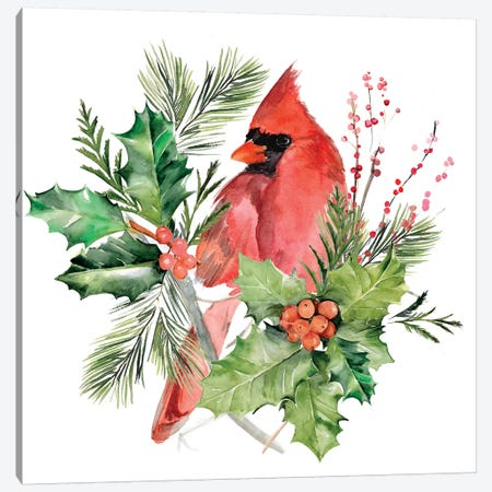 Cardinal Holly Christmas Collection C Canvas Print #JPP356} by Jennifer Paxton Parker Canvas Art Print