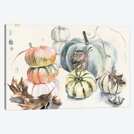 Harvest Pumpkins Collection A Canvas Print #JPP372} by Jennifer Paxton Parker Canvas Artwork