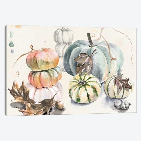 Harvest Pumpkins Collection A Canvas Print #JPP372} by Jennifer Paxton Parker Canvas Artwork
