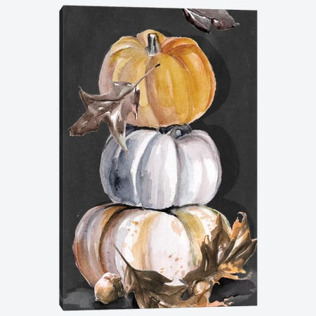 Harvest Pumpkins Collection B  Canvas Print #JPP373} by Jennifer Paxton Parker Canvas Wall Art