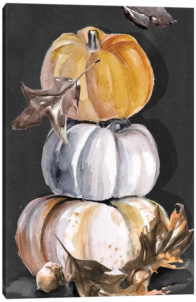 Harvest Pumpkins Collection B  Canvas Art Print