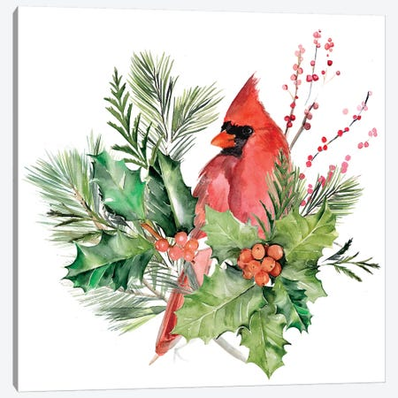 Cardinal Holly Christmas I Canvas Print #JPP383} by Jennifer Paxton Parker Canvas Print