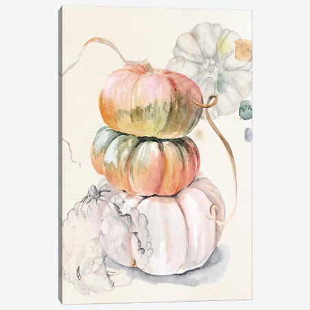 Harvest Pumpkins I Canvas Print #JPP398} by Jennifer Paxton Parker Canvas Artwork