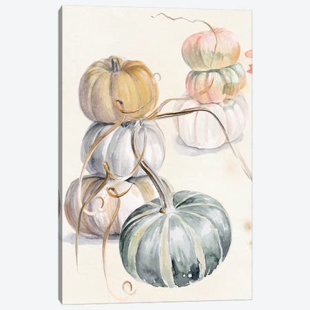 Harvest Pumpkins II Canvas Print #JPP399} by Jennifer Paxton Parker Canvas Wall Art