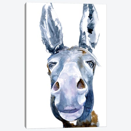 Sweet Donkey I Canvas Print #JPP412} by Jennifer Paxton Parker Canvas Art Print