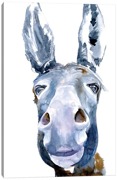 Sweet Donkey I Canvas Art Print