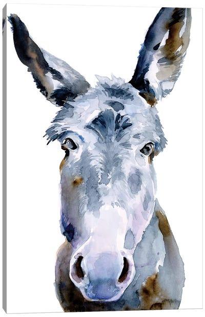 Sweet Donkey II Canvas Art Print