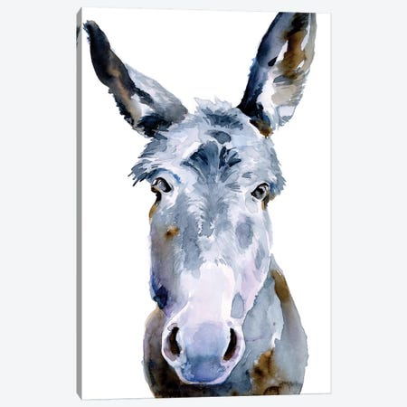 Sweet Donkey II Canvas Print #JPP413} by Jennifer Paxton Parker Canvas Print