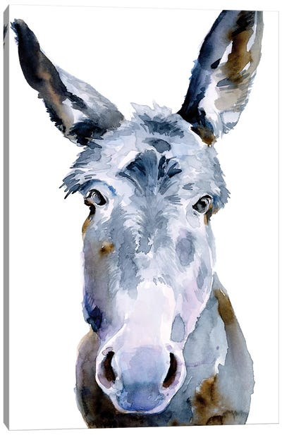 Sweet Donkey II Canvas Art Print