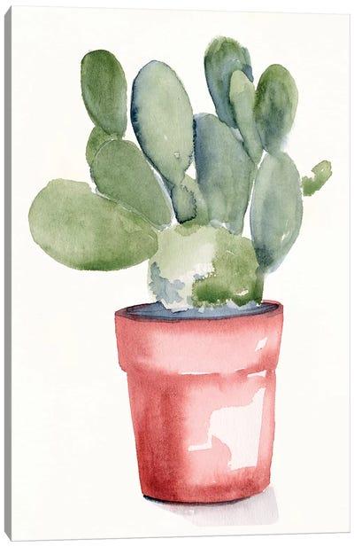 Potted Succulent I Canvas Art Print