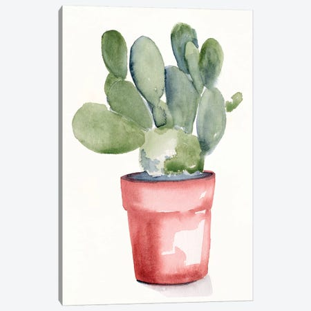 Potted Succulent I Canvas Print #JPP476} by Jennifer Paxton Parker Canvas Wall Art