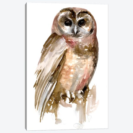 Watercolor Owl II Canvas Print #JPP483} by Jennifer Paxton Parker Canvas Artwork