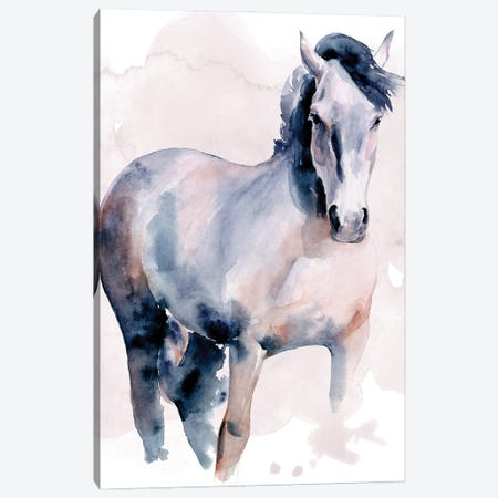 Horse in Watercolor I Canvas Print #JPP490} by Jennifer Paxton Parker Art Print