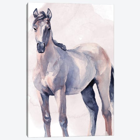 Horse in Watercolor II Canvas Print #JPP491} by Jennifer Paxton Parker Art Print
