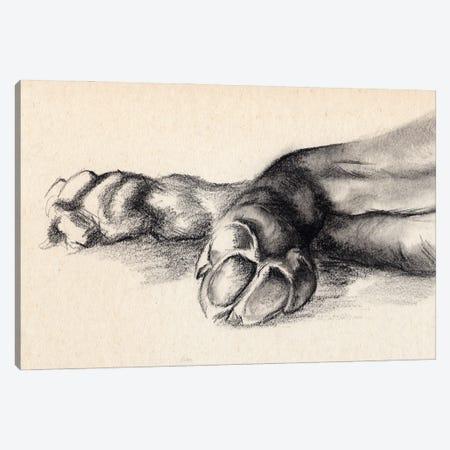 Charcoal Paws I Canvas Print #JPP498} by Jennifer Paxton Parker Art Print