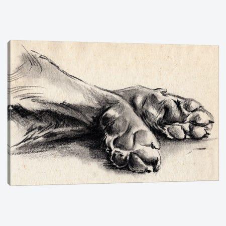 Charcoal Paws II Canvas Print #JPP499} by Jennifer Paxton Parker Art Print