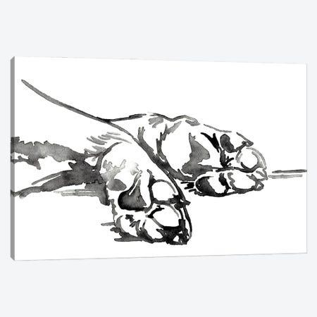 Linear Paws I Canvas Print #JPP500} by Jennifer Paxton Parker Canvas Print