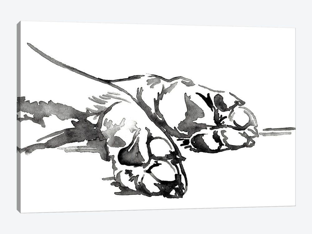 Linear Paws I by Jennifer Paxton Parker 1-piece Canvas Wall Art