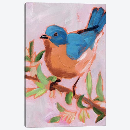 Painted Songbird I Canvas Print #JPP504} by Jennifer Paxton Parker Canvas Art