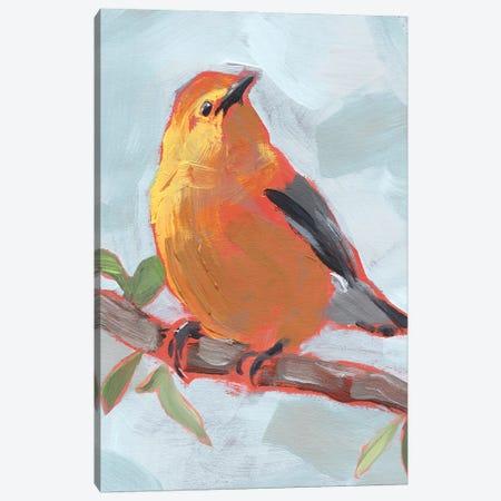 Painted Songbird III Canvas Print #JPP506} by Jennifer Paxton Parker Canvas Wall Art