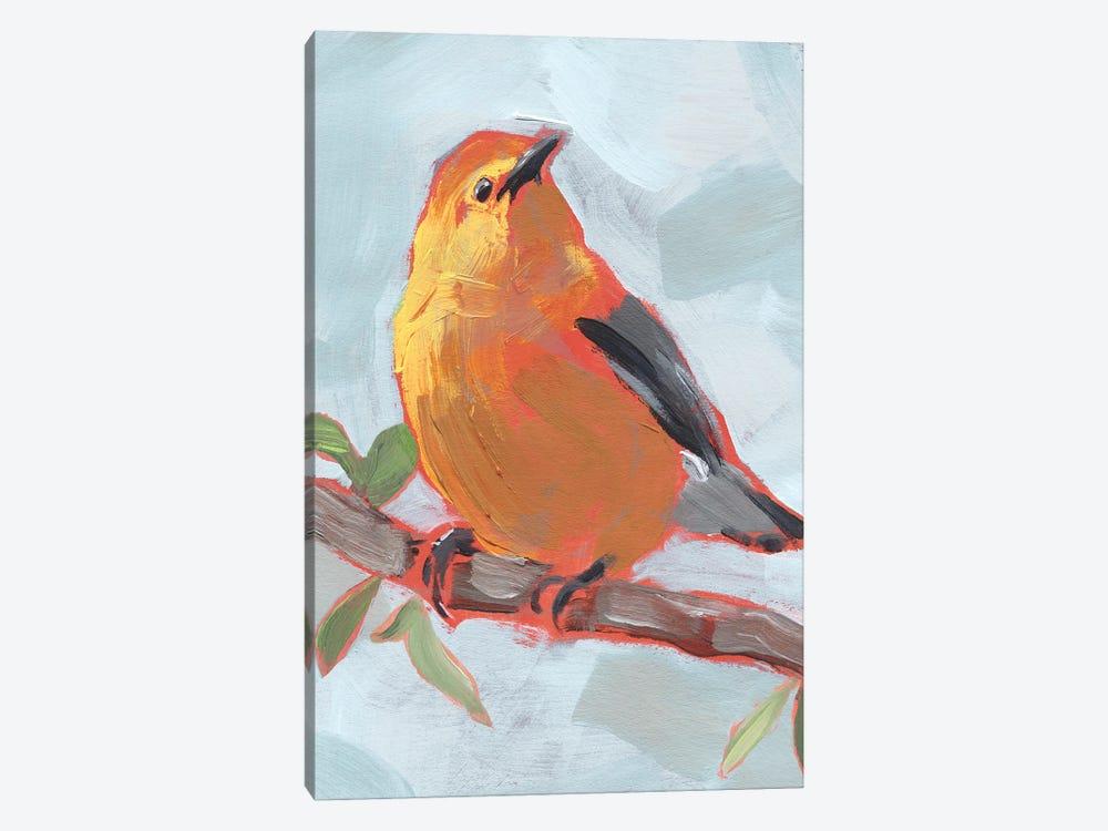 Painted Songbird III by Jennifer Paxton Parker 1-piece Canvas Artwork