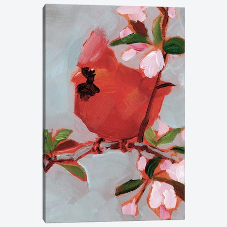 Painted Songbird IV Canvas Print #JPP507} by Jennifer Paxton Parker Canvas Art