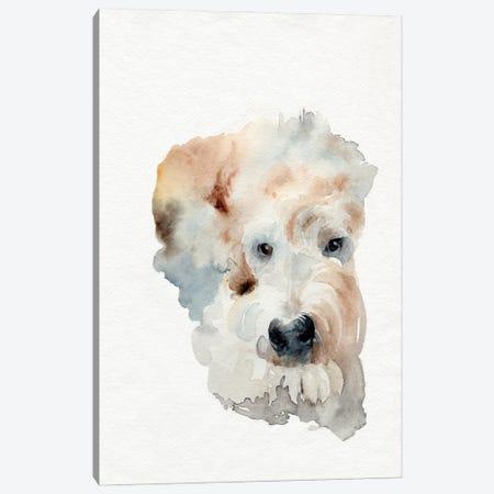 Scruffy Puppy I Canvas Print #JPP510} by Jennifer Paxton Parker Canvas Artwork