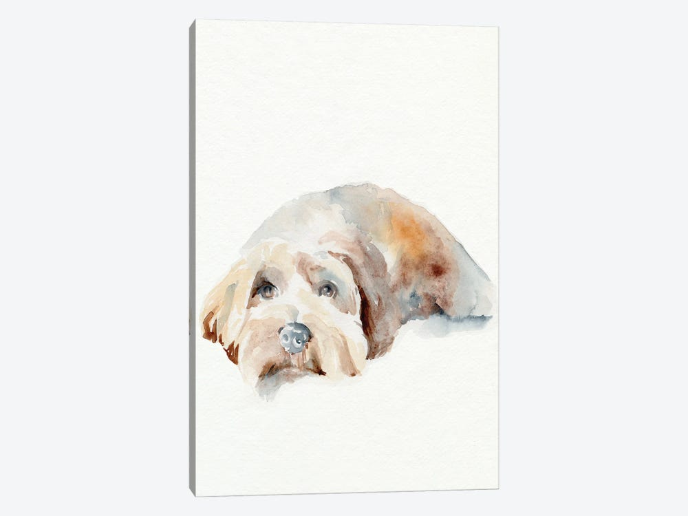 Scruffy Puppy II by Jennifer Paxton Parker 1-piece Canvas Art