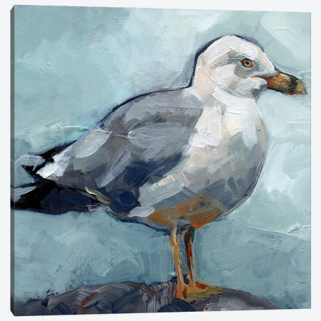 Seagull Stance I Canvas Print #JPP512} by Jennifer Paxton Parker Canvas Artwork