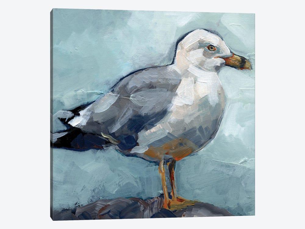 Seagull Stance I by Jennifer Paxton Parker 1-piece Canvas Print