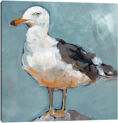 Seagull Stance II Canvas Art Print