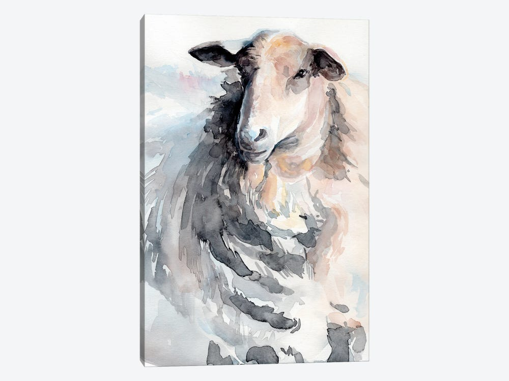 Watercolor Sheep II by Jennifer Paxton Parker 1-piece Canvas Artwork