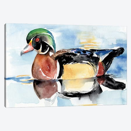 Watercolor Woodduck I Canvas Print #JPP516} by Jennifer Paxton Parker Canvas Print