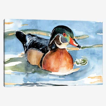 Watercolor Woodduck II Canvas Print #JPP517} by Jennifer Paxton Parker Canvas Art Print
